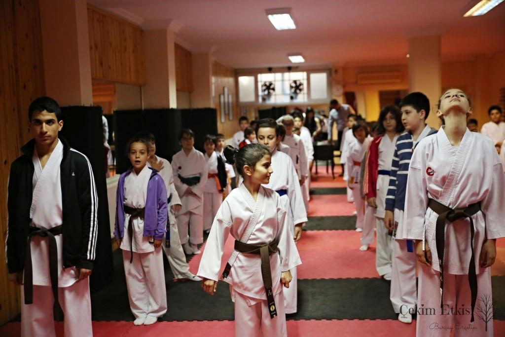 karate fotografı elit karate
