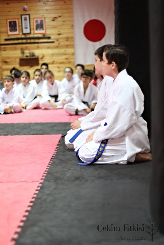 karate fotografı elit karate ankara