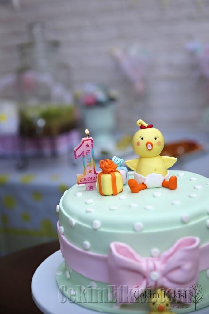 1 yaş doğumgünü cakesmash pasta patlatma dış mekan fotoğraf çekim etkisi burçay erçetin